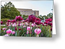 Msu Spring 21 Greeting Card