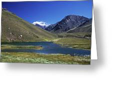 Mt Aconcagua And Laguna Horcones Greeting Card