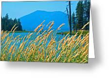 Mt. Bachelor  Greeting Card