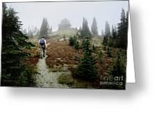 Mt Brown Lookout - Glacier National Park Greeting Card