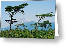 Mt. Fuji ... Greeting Card