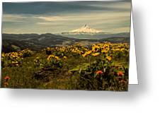 Mt. Hood And Wildflowers Greeting Card