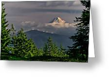Mt Hood From Grassy Knoll Greeting Card