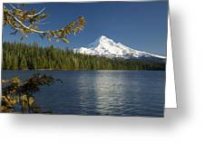 Mt Hood From Lost Lake Greeting Card