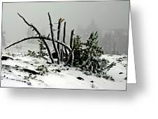 Mt Hood Snow Greeting Card