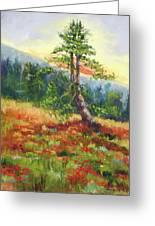 Mt. Jumbo Tree Ak Greeting Card