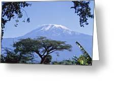 Mt. Kilimanjaro,moshi,tanzania Greeting Card
