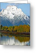 Mt Moran From Ox Bow Bend Greeting Card
