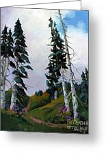 Mt. Rainier 3 Greeting Card