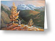 Mt. Rainier 5 Greeting Card