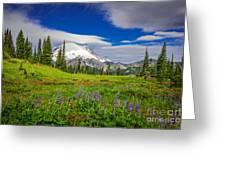 Mt Rainier And Wildflowers Greeting Card