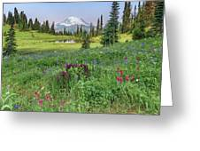 Mt Rainier Meadow Flowers Greeting Card