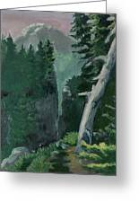 Mt Ranier Greeting Card
