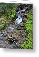 Mt. Spokane Creek 2 Greeting Card
