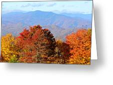 Mt. Sterling Greeting Card