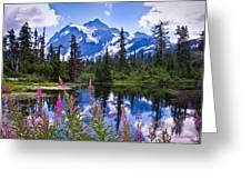 Mt. Shuksan Greeting Card by Claudia Abbott