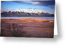 Mt. Timpanogos And Utah Lake Greeting Card