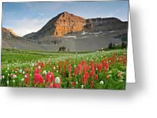 Mt Timpanogos Greeting Card