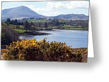 Muckish ,irish Landscape  Greeting Card
