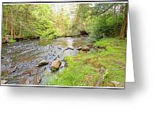 Mud Run, Pennsylvania, Pocono Mountain Stream Greeting Card