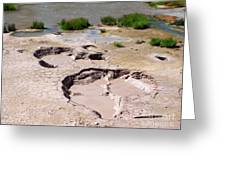 Mud Volcano Area In Yellowstone National Park Greeting Card