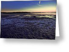 Muddy Beach Greeting Card