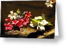 Muddy Flowers  Greeting Card
