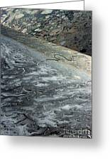 Mudflats Frozen Greeting Card