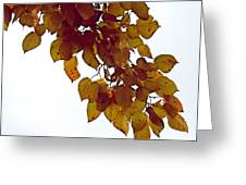 Mulberry Autumn Greeting Card