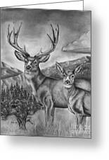 Mule Deer Heaven Greeting Card