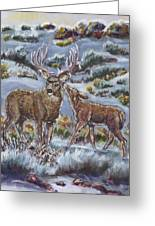Mule Deer Lovers From River Mural Greeting Card