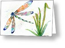Multi-colored Dragonfly Greeting Card