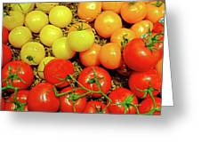 Multi Colored Tomatoes Greeting Card