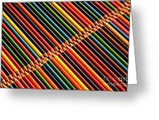 Multicolored Pencils In Rows Greeting Card