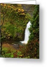 Multnomah Autumn Greeting Card