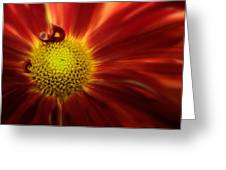 Mum Red Rover Greeting Card