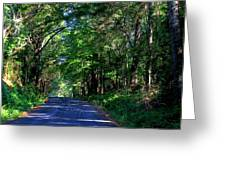 Murphy Mill Road - 2 Greeting Card