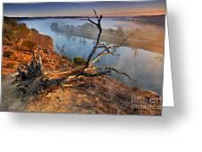 Murray River Dawn Greeting Card