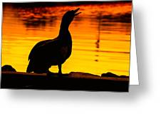 Muscovy Sunset Greeting Card