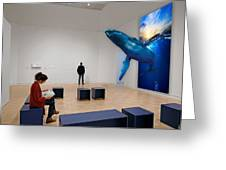 Museum Whale Watching Greeting Card