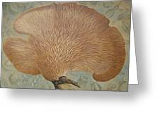 Mushroom  And Seeds Greeting Card