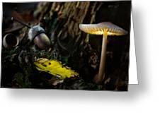 Mushroom Lantern Enchanted Forest Greeting Card