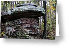 Mushroom Rock Greeting Card