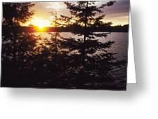Muskoka Lake Of Bays Sunrise Greeting Card