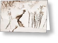 Muskoka Winter 1 Greeting Card