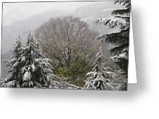 Mussoorie Winter 1 Greeting Card