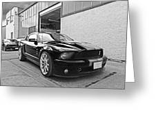 Mustang Alley In Black And White Greeting Card by Gill Billington