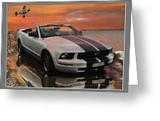 Mustang And Mustang At The Beach Greeting Card