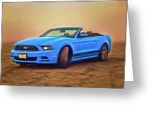 Mustang Ocean Shores Beach Greeting Card