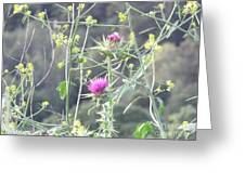 Mustard And Thistle Greeting Card